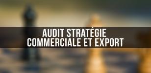 Audit stratégie commerciale et export