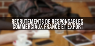Recrutements de responsables commerciaux France et export