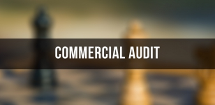commercial audit